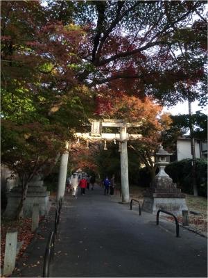 京都奈良H271121_03