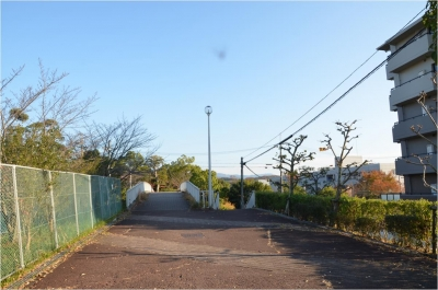 奈良H261122_03_011
