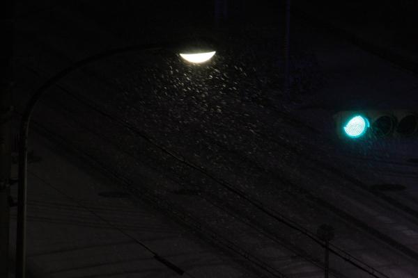 141218-snow-02.jpg