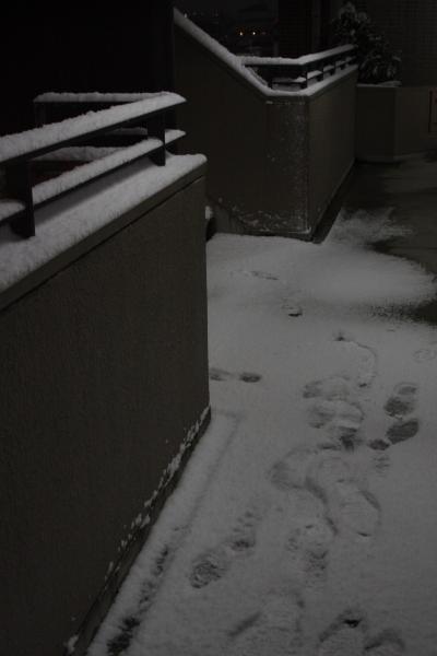 141218-snow-06.jpg
