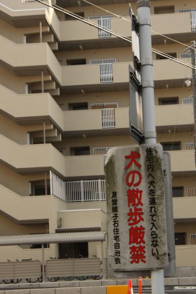 15011-home-09.jpg