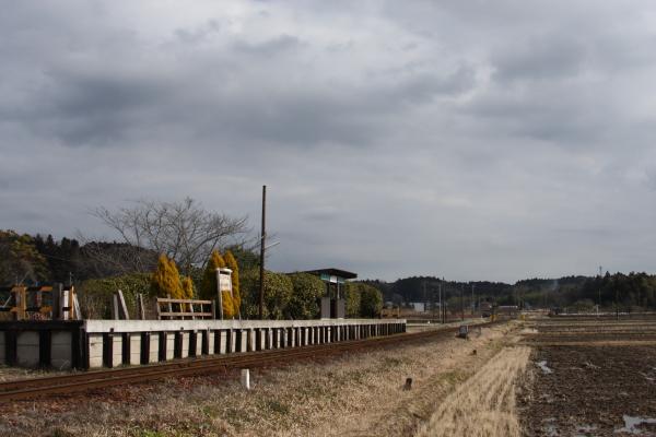 150124-komi-35.jpg