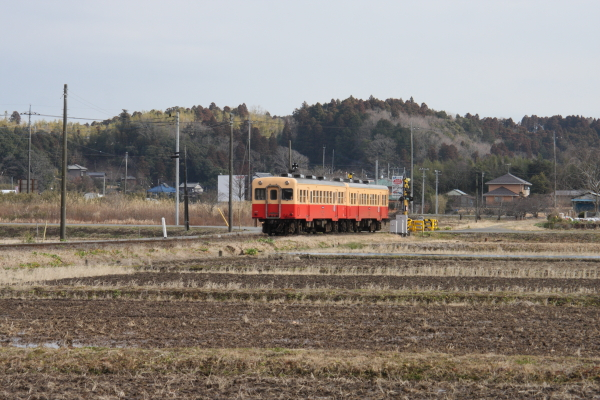 150124-komi-36.jpg