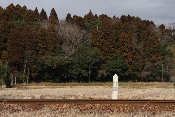 150124-komi-40.jpg