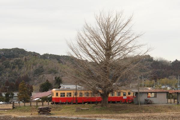 150124-komi-48.jpg