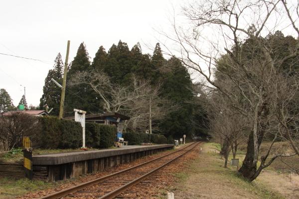 150124-komi-59.jpg