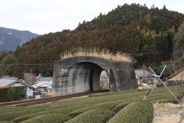 150221-ohigawa-101.jpg
