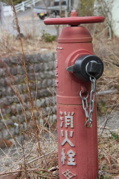 150221-ohigawa-115.jpg