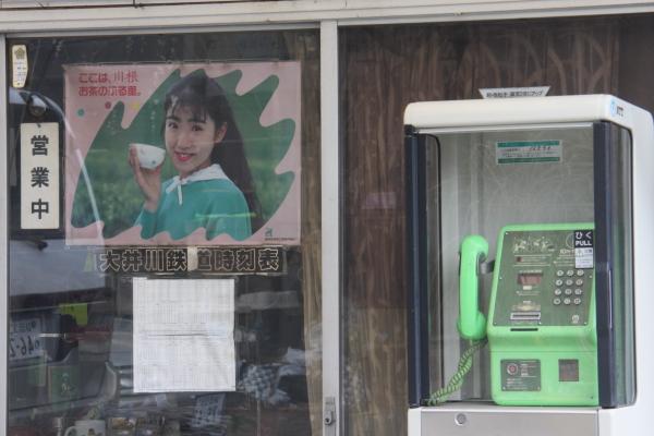 150221-ohigawa-117.jpg