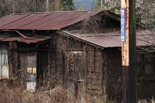 150221-ohigawa-212.jpg