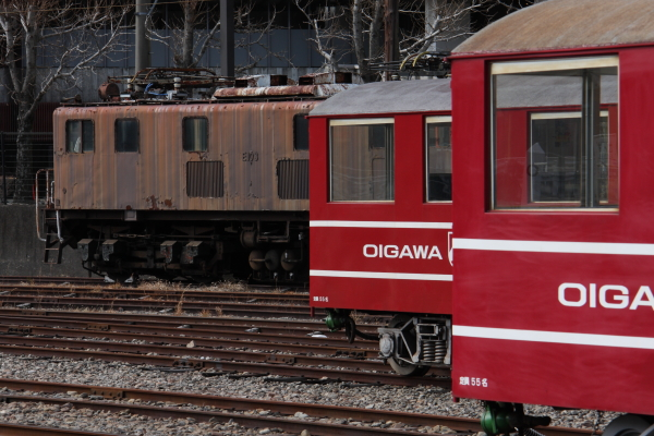 150221-ohigawa-314.jpg
