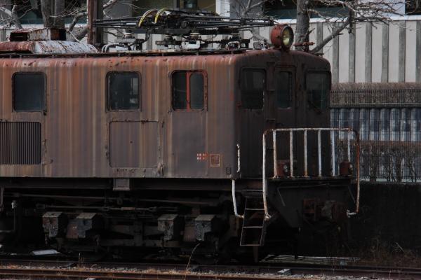 150221-ohigawa-316.jpg