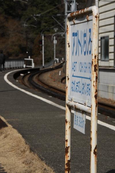 150221-ohigawa-404.jpg