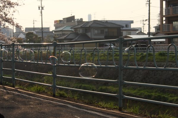 150331-kana-17.jpg