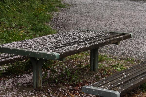 150405-rain-07.jpg