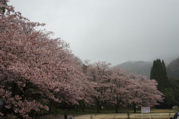 150405-rain-09.jpg