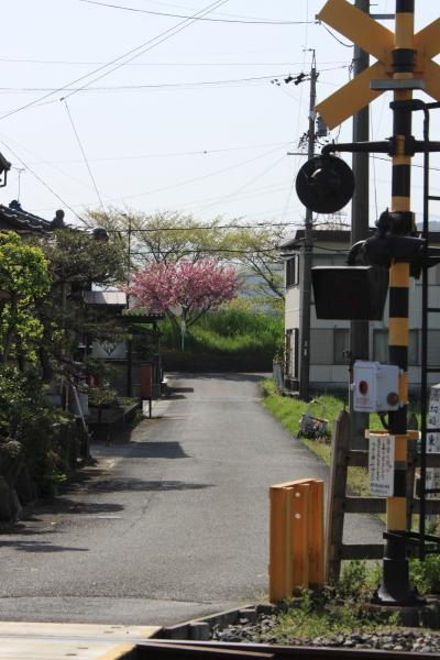 150412-train-23.jpg