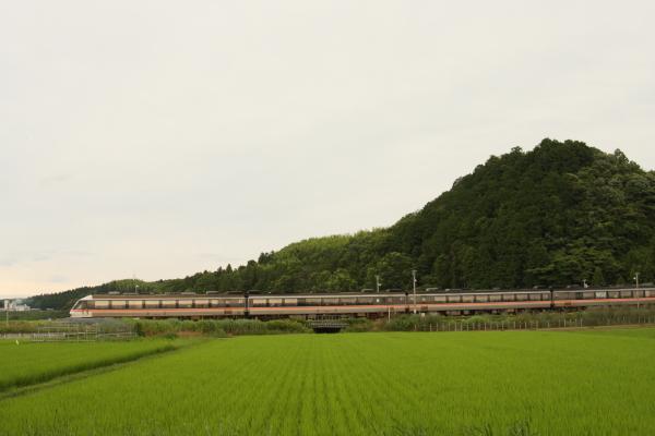1506227-sangu-58.jpg