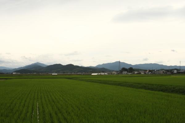 1506227-sangu-59.jpg