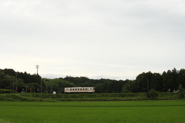 1506227-sangu-70.jpg