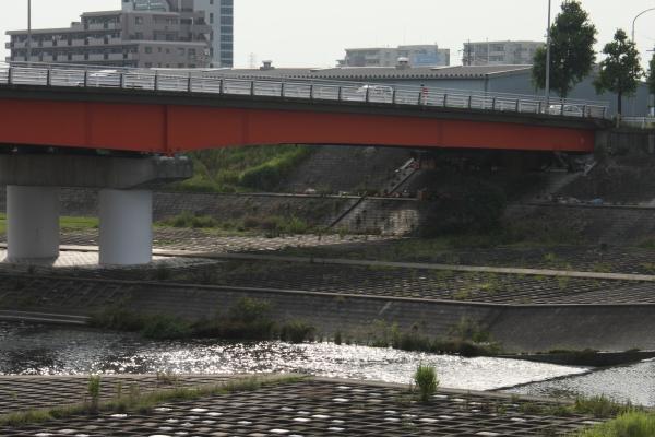 150711-yada-11.jpg