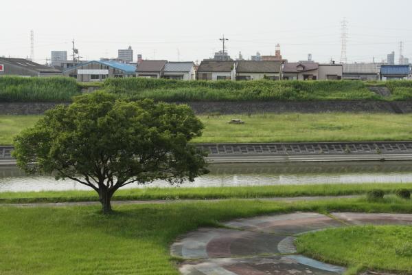 150711-yada-12.jpg