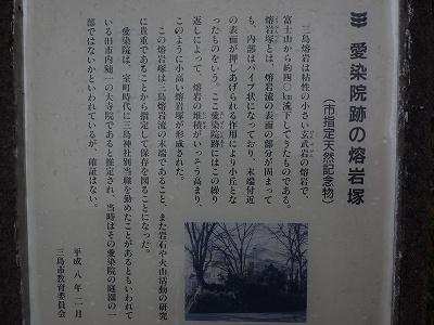 P1230141.jpg