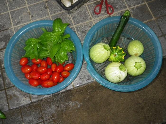 収穫2_15_07_16