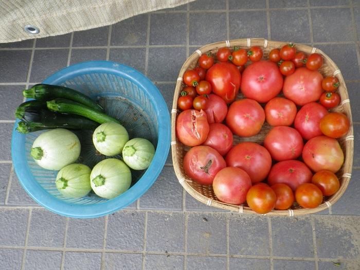 収穫2_15_07_19