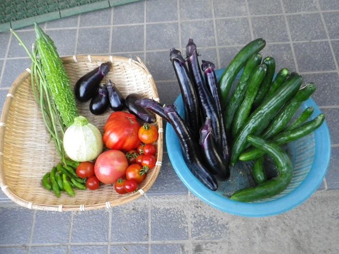 収穫1_15_07_25