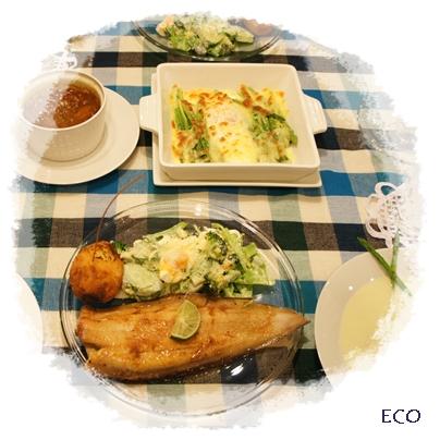 eco323.jpg