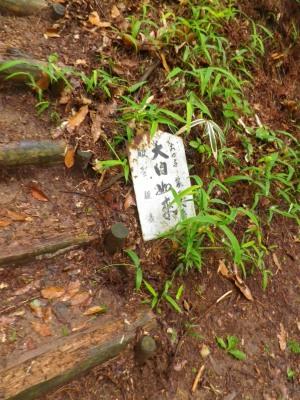 2015.06.六甲山