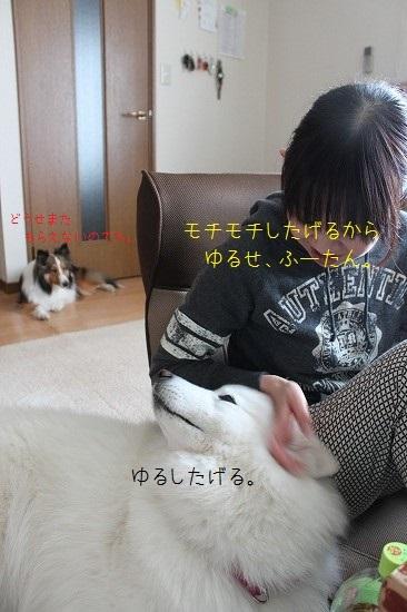 17IMG_8420.jpg