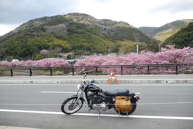 2015_0302戸田別館 0016