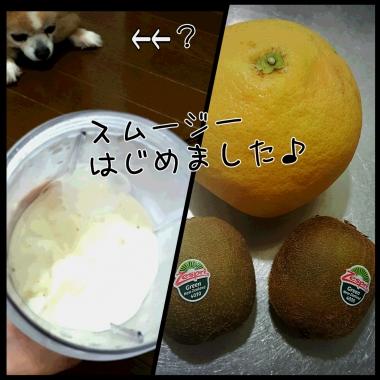 PhotoGrid_1434514967261.jpg