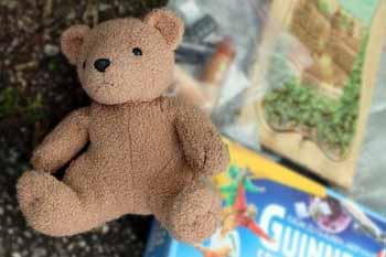 bear-337701_640.jpg