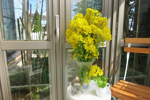 3-28菜の花飾る