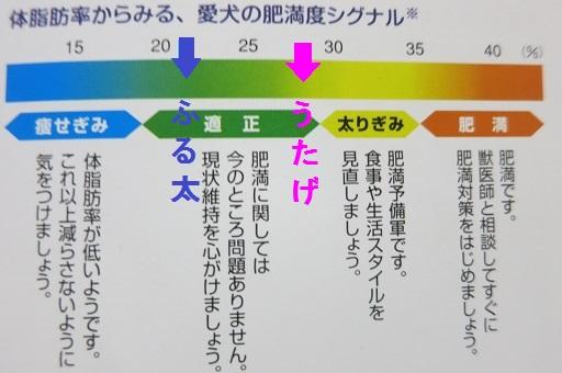 4-10広告③
