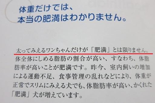4-10本文