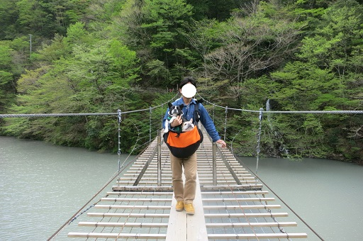 5-1パパつり橋②