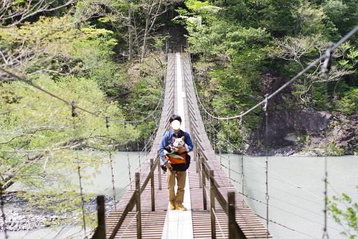 5-1パパつり橋①