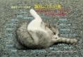 Postcard8_egara.jpg