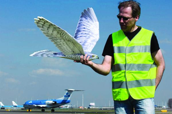 GreenX_Hawk-Schiphol.jpg