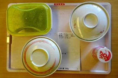 昼食:ミキサー食
