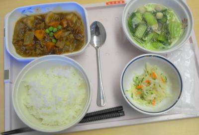 夕食 ビーフシチュー、小松菜もOK