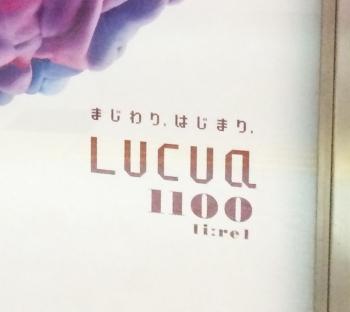 LUCUA1100-5.jpg