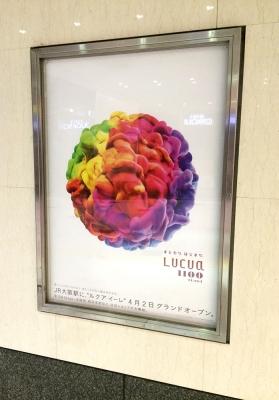LUCUA1100.jpg
