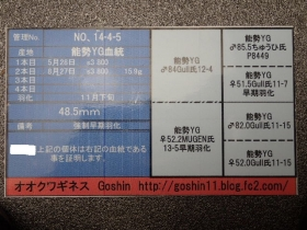 2015_02020001.jpg