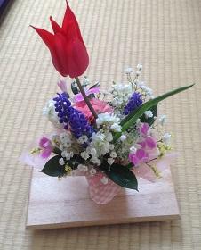 庭の花たちで^^