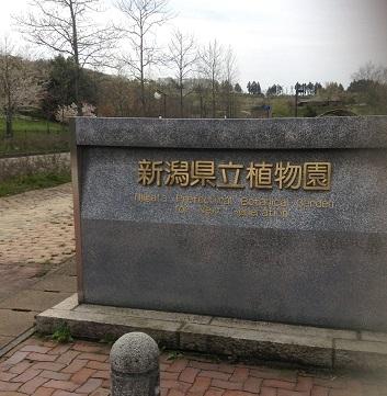 新潟県立植物園に来ました